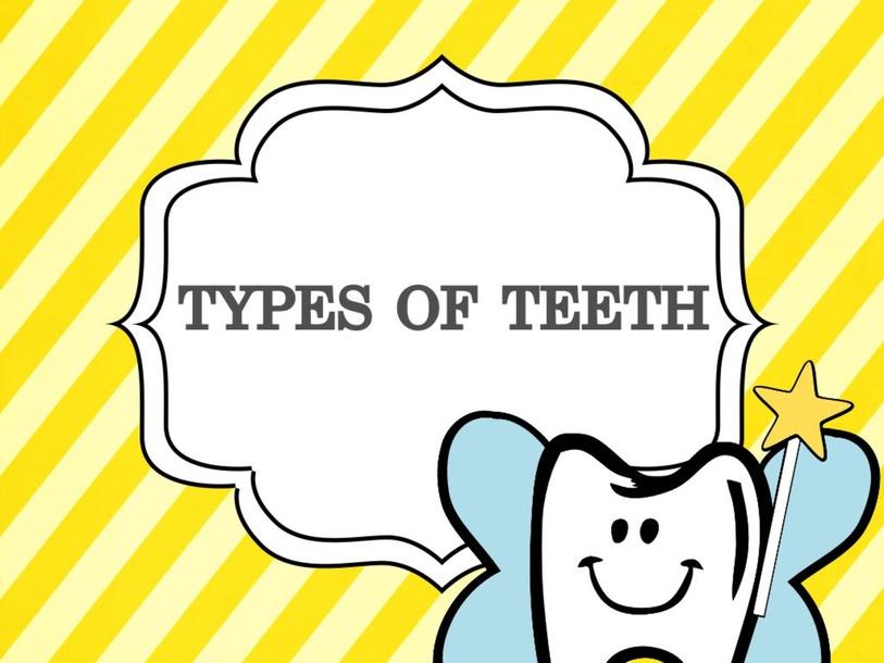 Teeth by 桂瑄 胡