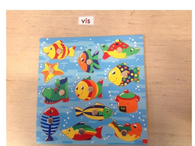 Tellen Vissen  by Ellen heerink