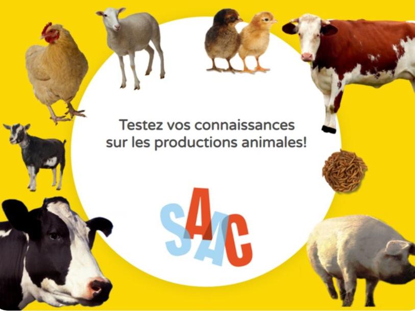 Testez vos connaissances sur les productions animales by SAAC FSAA Université Laval