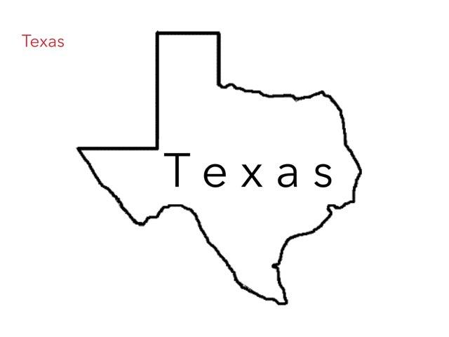 Texas State Symbols  by Melodi kunn