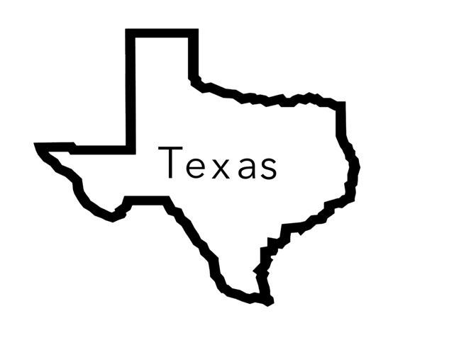 Texas Symbols  by Melodi kunn