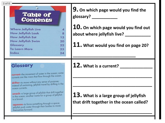 Text Features by Shelly Pickren