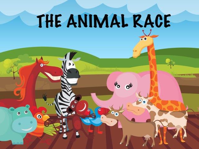 The Animal Race by Catherine  Dagmar