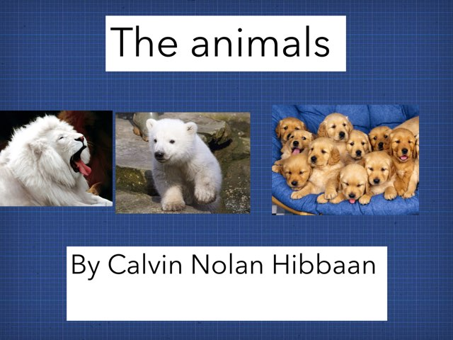 The Animals by Darra Chrysler