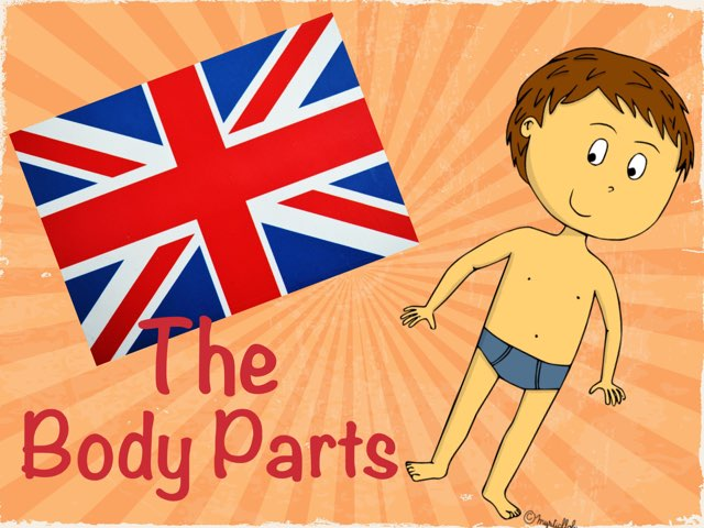 The Body Parts by Caillot Sarah