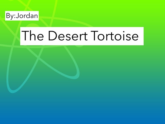 The Desert Tortoise by Amy Clay