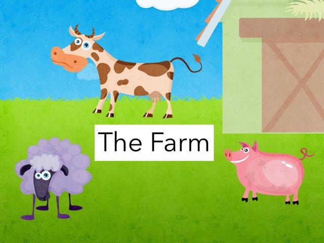 The Farm by Casandra Hohensee