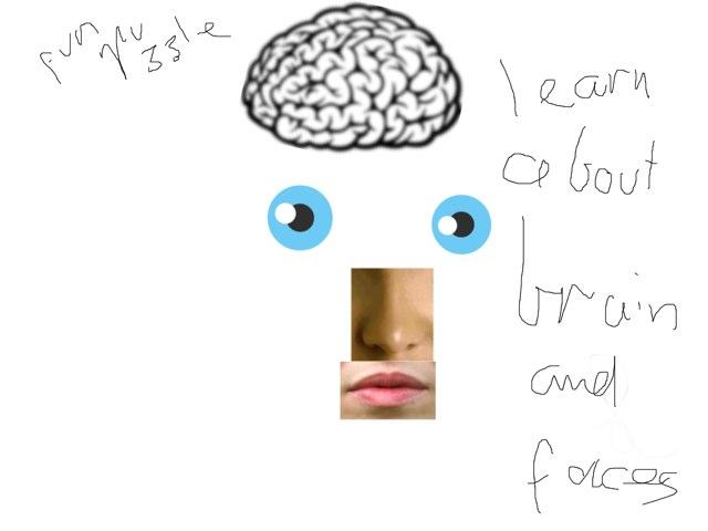 The Fix The Brain by Keala Whitty