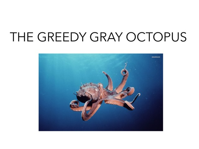 The Greedy Gray Octopus! by Caren Rothstein