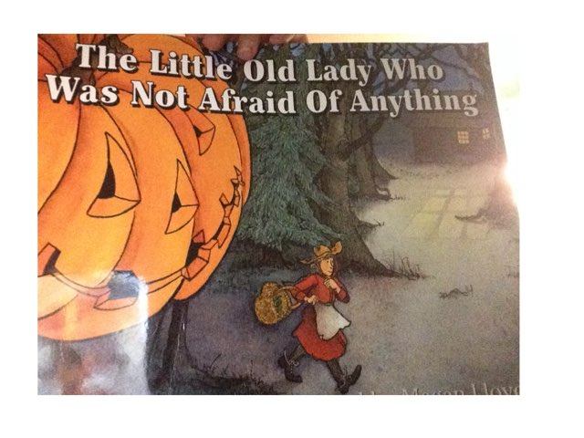 The Little Old Lady Who Was Not Afraid Of Anything  by Sophia Hashemi