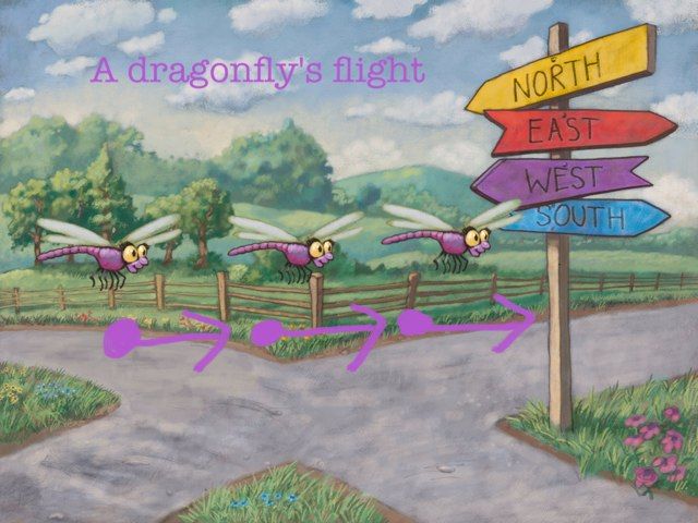 The Motion Map Of A Dragonfly by Arizona Woodard