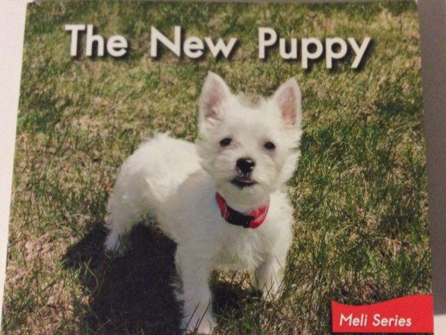 The New Puppy Vocab Activity HCPSS LLI Green Book 3 Level A  by Chanel Sanchez