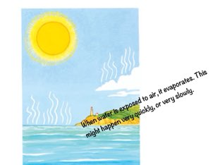The Water Cycle by Allison Seubert
