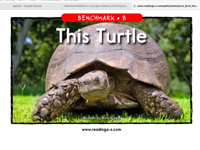 This Turtle Level B EBook by iat hcpss