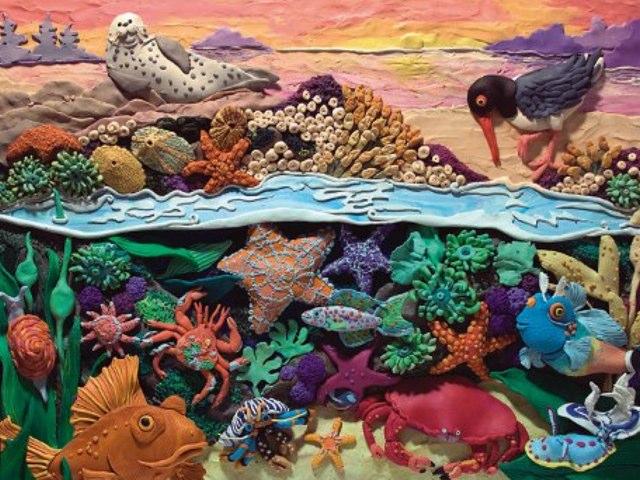 Tide Pool  by Jeanine Wolf