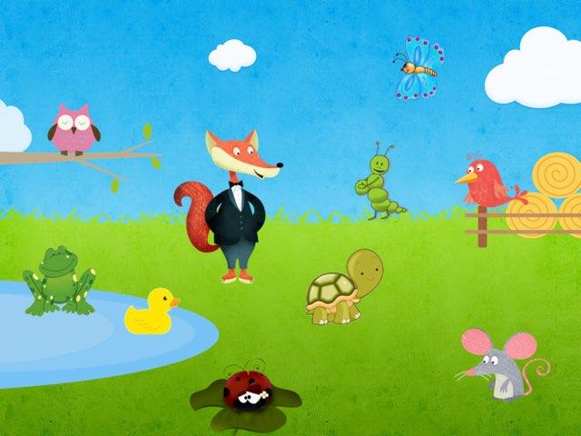 Tiere by Andreia Cardoso