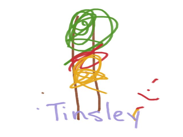 Tinsley N by Boone Central Primary Cart