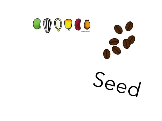 Tiny Seed Puzzles by Ann Leverette