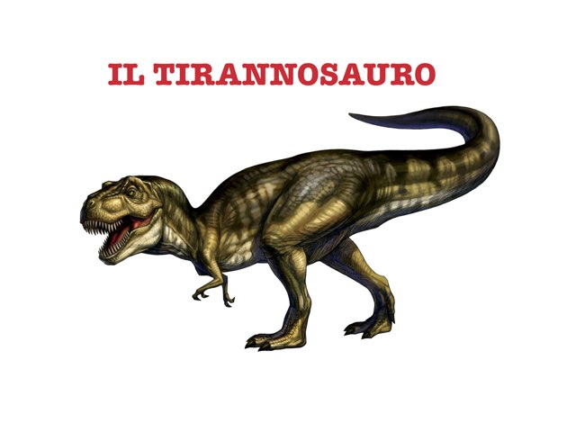 Tirannosauro by Valentina Buoso