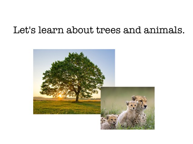 Trees And Animals by Julie Gittoes-Henry