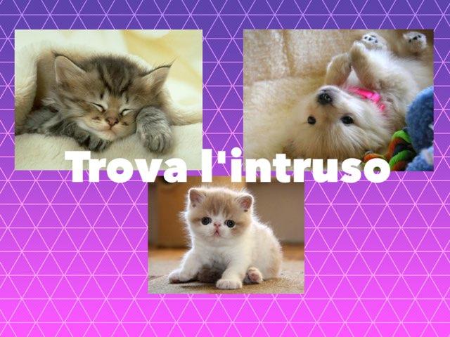 Trova L'intruso by Irina Nazarov
