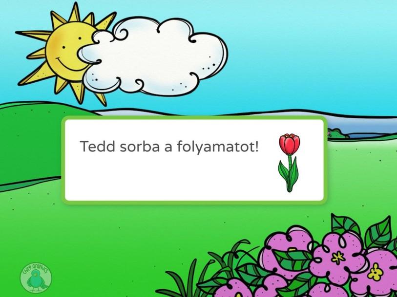 Tulipán sorrend by Ambrusz Linda