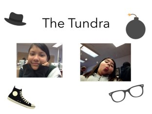 Tundra by Edgemere Elementary