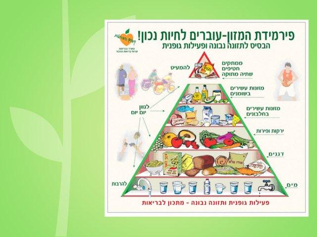 פירמידת המזון by חני קרן