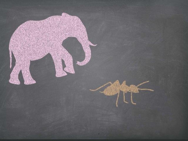 מי יותר גדול? by Liat Walker