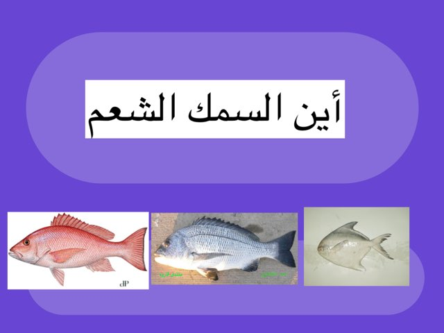 لعبة 149 by رهام أحمد