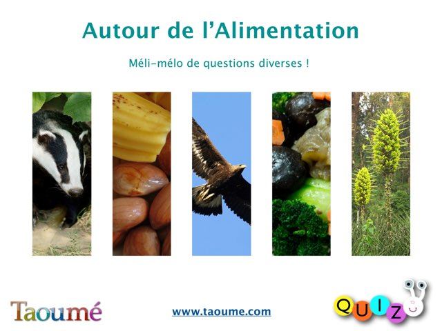 Quiz 3 - Taoumé by Florence Butterati