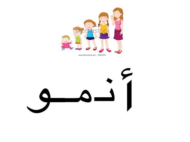 تركيب كلمة by abla ohoud