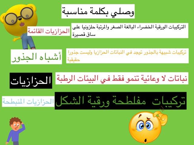 تقويم٢ by Ahmad ahmad