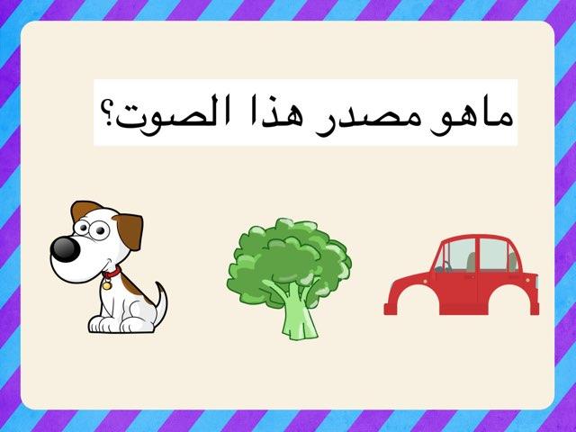 الأصوات by jawaher alotaibi