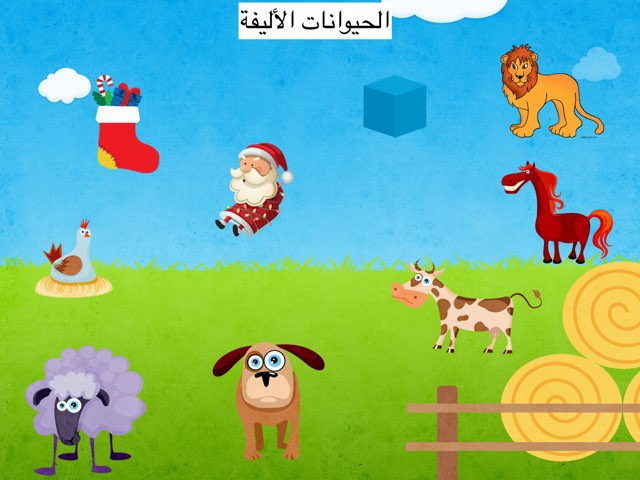 מאגד שלומי 2015 by בית ספר אלמג'ד
