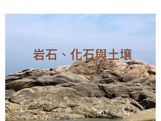 岩石、化石和土壤 by yenj wu