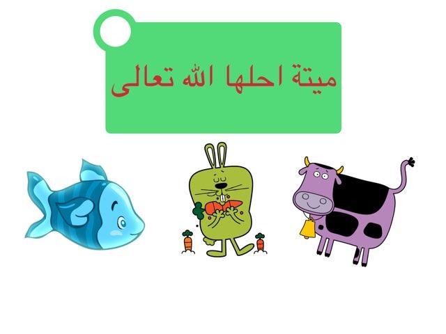 طهارة ماء البحر by فاطمه العجمي