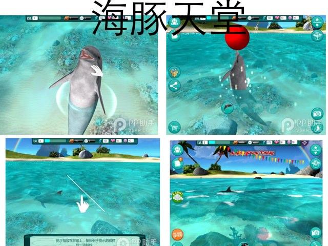 海豚 by Melody Chen