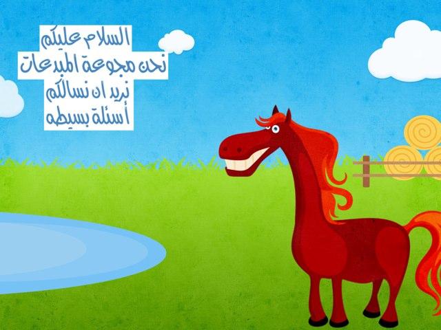 المبدعات by Ahad Almutiri