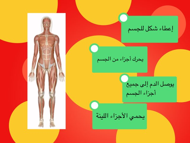 ١ by Fatma Al-Ameer
