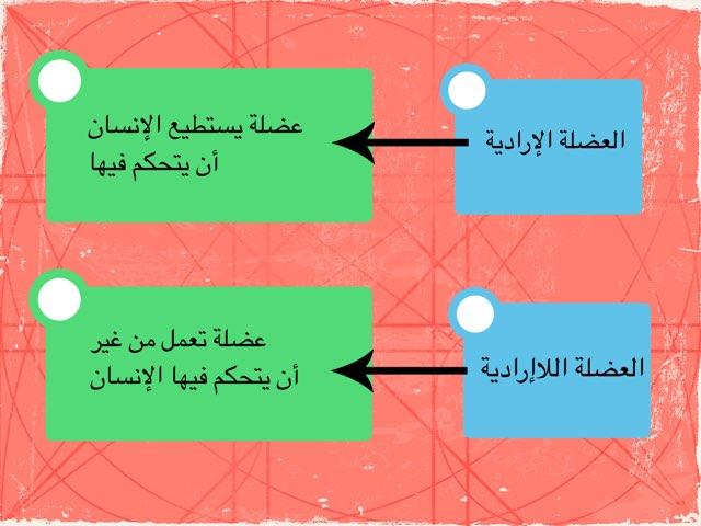 ٢ by Fatma Al-Ameer