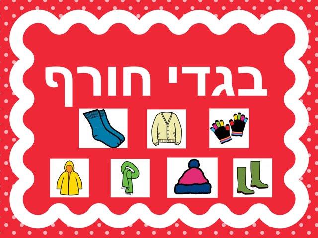 הכרת בגדי החורף by חגית אברהם