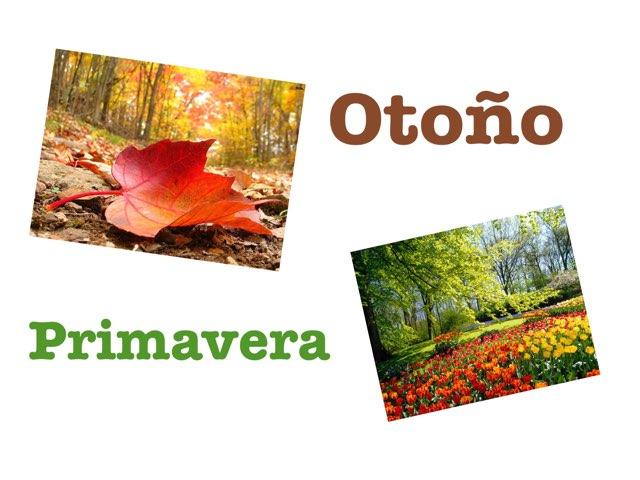 Otoño Primavera by Amal gonzalez