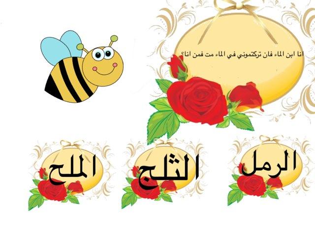 لعبة 30 by Noor Ali