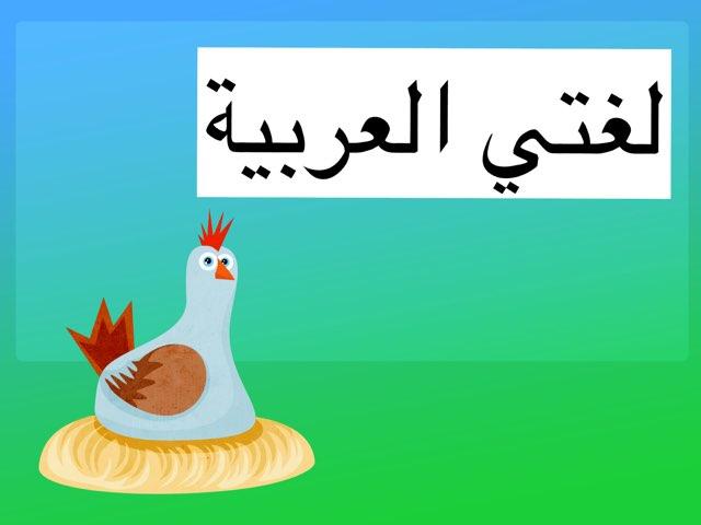 حرف الدال by Fajer Alshammri