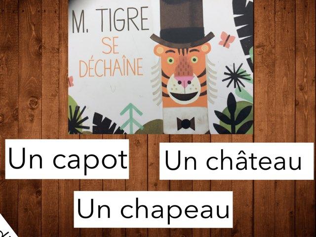 M. Tigre se déchaîne #devinincos by Ecole Puimichel
