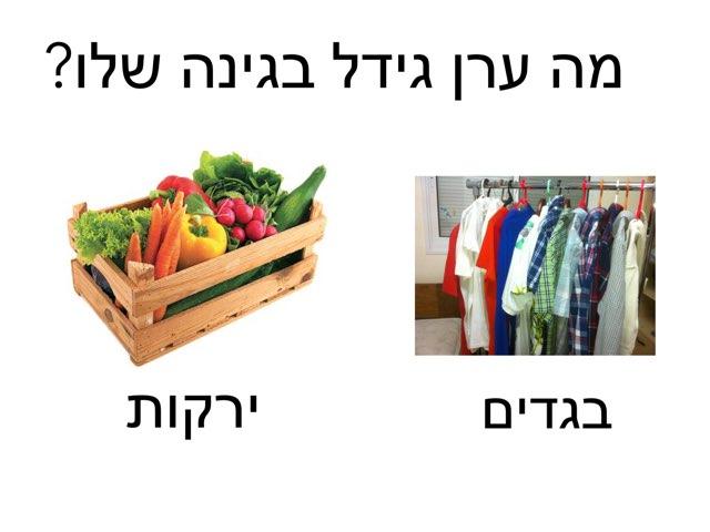 ערן הגנן by Masha Roytman