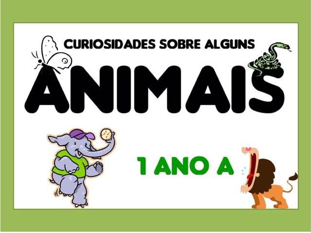 Curiosidades Animais-1º Ano A by Fernanda Lourenço