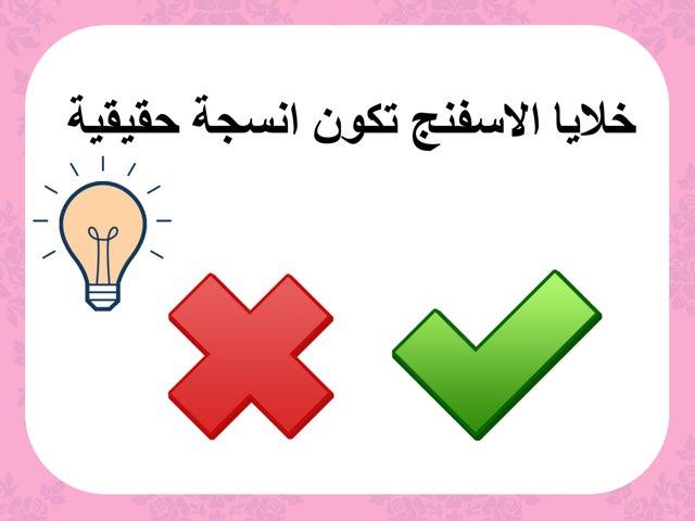 اسئلة صح وغلط للصف الثامن علوم by mariam yousef