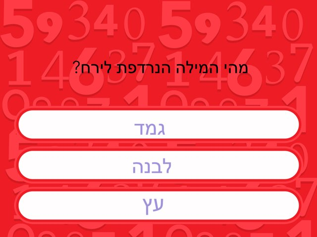 מילים נרדפות של דביר by Netaaya Schwartz
